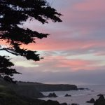 A colorful morning in Mendocino, the town Redwood Cove in my cozy mystery series is based on.